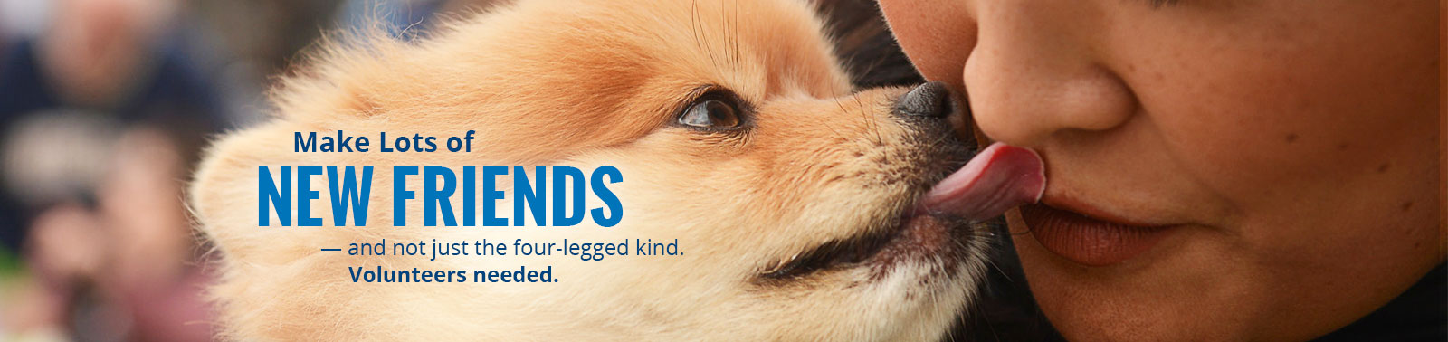 Make new friends - and not just the four-legged kind. Volunteers needed. Puppy kissing a volunteer.